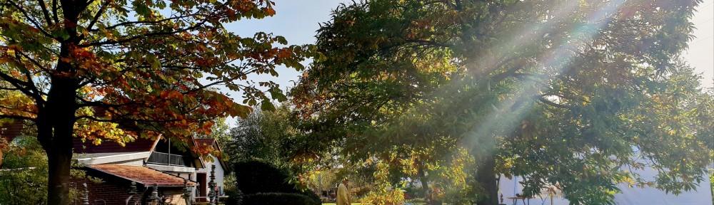 HerbstART3